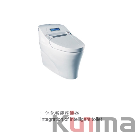 New Product Dry Toilet