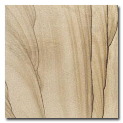 Pine Grainy Yellow Sandstone